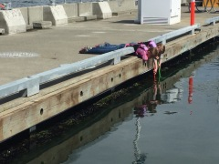 Girl's engineered fishing rods from eel grass and sticks