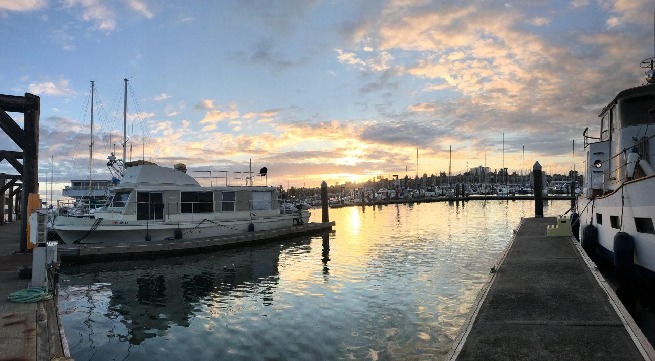 Chapter 23: Sunrises, Sunsets and Marine Life AroundUs