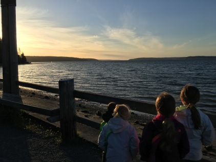 Watching whales spout from Langley
