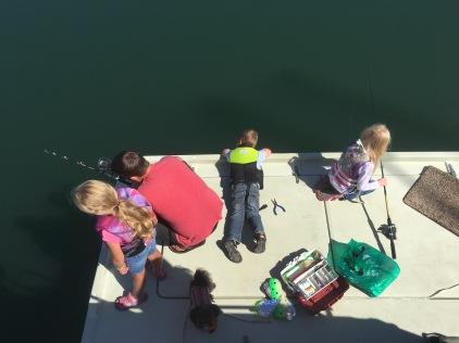 Fishing for fingerlings